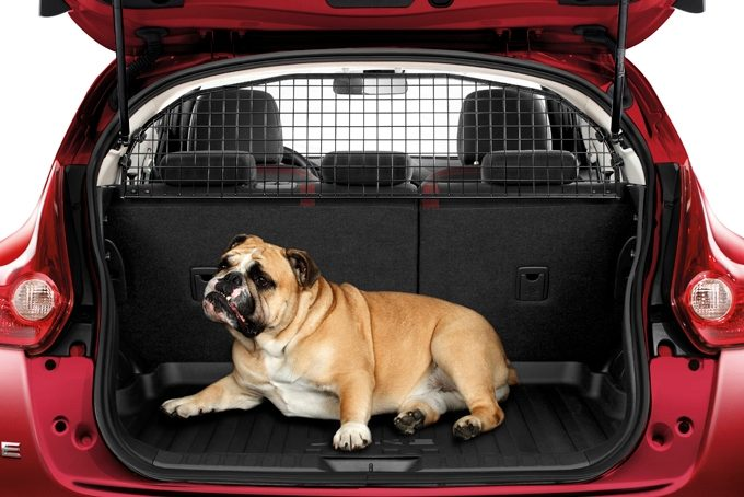 Nissan Juke - Interior - Dog guard