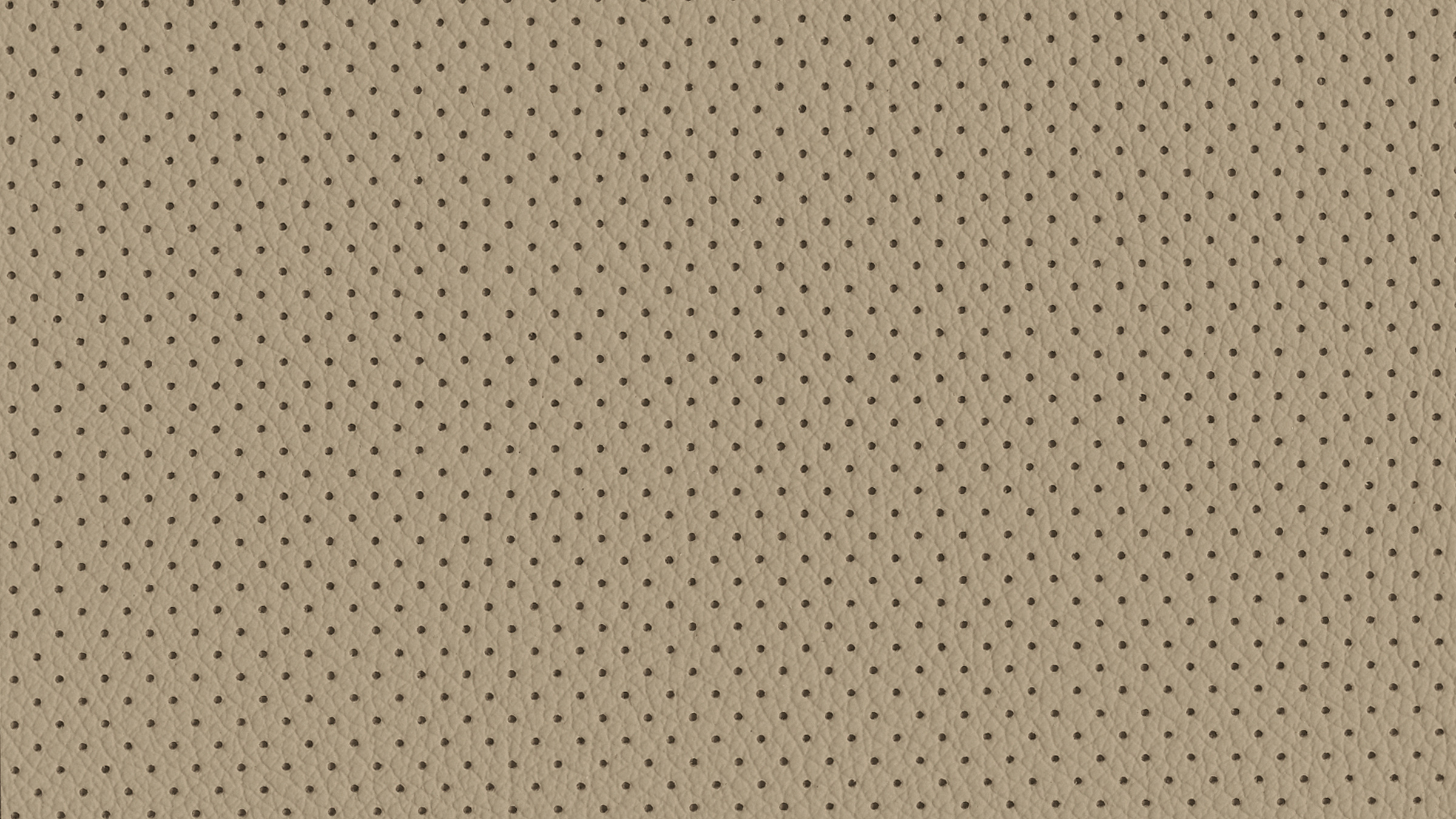 CREAM LEATHER WITH PERFORATION