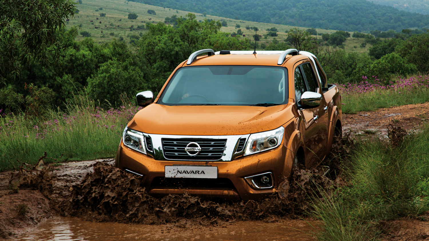 All new navara